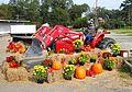 FarmSupplyScarecrow.jpg