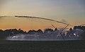 Farm Sunset - Crop Irrigation Watering System - Wisconsin (36576951435).jpg