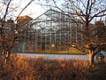 Farquharson Life Sciences Greenhouse.jpg
