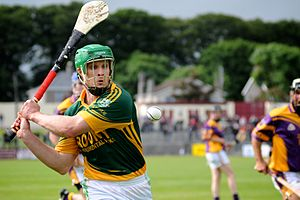Fergal Healy - Fergal Healy in action for Craughwell in 2013