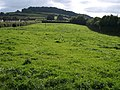 Field by Peartree Cross - geograph.org.uk - 944989.jpg