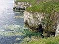 Flamborough Cliffs - geograph.org.uk - 173221.jpg