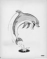 Flipper TV Series Illustration 1960s.jpg
