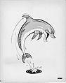 Flipper TV Series Illustration 1960s.jpg