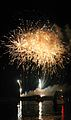Florida New Years Fireworks (84542327).jpg