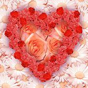 Coeur composé de roses
