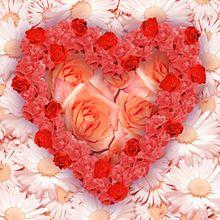 220px-Flower_heart