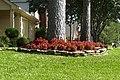 Flowers in the Yard (4797909490).jpg