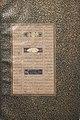 Folio from a Mantiq al-tair (Language of the Birds) MET sf63-210-8v.jpg