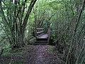 Footbridge on Footpath 785 - geograph.org.uk - 257630.jpg
