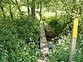 Footbridge over Black Brook - geograph.org.uk - 1340200.jpg