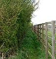 Footpath near Lower Fields Farm, Napton - geograph.org.uk - 1272833.jpg