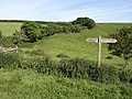 Footpath sign near Woodhuish - geograph.org.uk - 858847.jpg