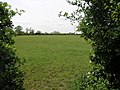Footpath to Braybrooke - geograph.org.uk - 175216.jpg