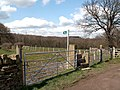 Footpath to Nor Royd Wood - geograph.org.uk - 767444.jpg