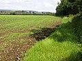 Footpath towards Merstone - geograph.org.uk - 485467.jpg