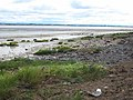 Foreshore at Bowness-on-Solway - geograph.org.uk - 933185.jpg