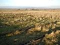 Foundations of Abandoned RAF Camp, Stoney Keld - geograph.org.uk - 122605.jpg