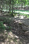 Foxholes - Bois Jacques - Bastogne - 13.jpg