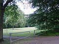 Frankfurt Biegwald 11.jpg