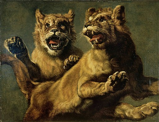 Frans Snyders - Two young jumping lions