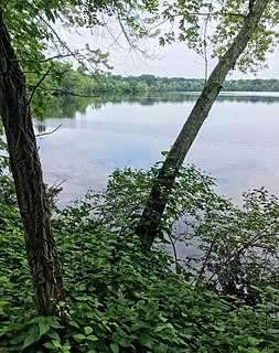 Fresh Pond (Cambridge, Massachusetts) human settlement in Cambridge, Massachusetts, United States of America