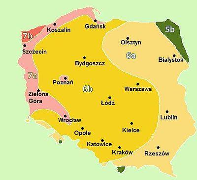 Znalezione obrazy dla zapytania strefy mrozowe polska