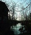 Fryszerka - młyn wodny na Widawce - panoramio.jpg