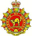 Full colour cap badge ONTR.jpg