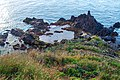 Funchal Madeira January 2014 - panoramio (18).jpg