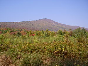 Taconic Mountains - The Taconic peak Mount Greylock, seen from the east, the highest point in Massachusetts