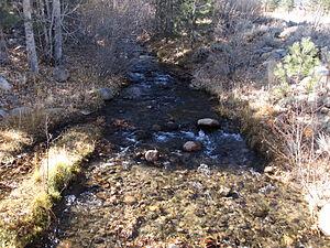 Galena, Washoe County, Nevada - Galena Creek, near Nevada Historical Marker number 212