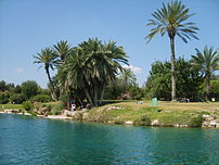 Natural pool in Gan Hashlosha National Park at...