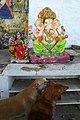 Ganesh à Pushkar (2).jpg