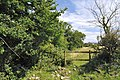 Gap in a hedge - Llanmaes - geograph.org.uk - 1410913.jpg