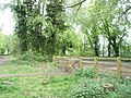 Gate from Hilsea Nature Trail to Scott Road - geograph.org.uk - 776854.jpg