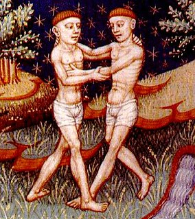 Gemini (astrology) Third astrological sign in the present zodiac