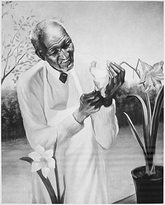 Painting by Betsy Graves Reyneau George W Carver - NARA - 559197.jpg