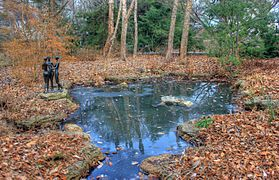 Gfp-st-louis-botanical-garden-pond-in-the-gardens.jpg