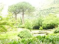 Giardino di Ninfa 134.jpg