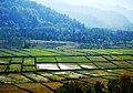 Gilan - Siyahkal - panoramio (1).jpg
