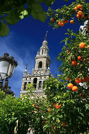 Giralda Tower Seville Spain.jpg