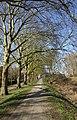Gorinchem - rijksmonument 365898 - Courtine X-XI 20120311.jpg