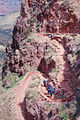 Grand Canyon National Park GRCA9856.jpg