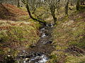 Great Mell Fell - Routing Gill Beck.JPG