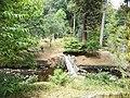 Gresgarth Garden 1.jpg