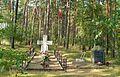 Groby Lasy Kobylnickie.JPG