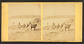 Group of people on the beach, from Robert N. Dennis collection of stereoscopic views.png