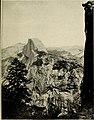 Guide leaflet (1901) (14767359845).jpg