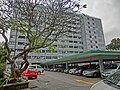 HK King's Park 伊利沙伯醫院 Queen Elizabeth Hospital Road 普通科護士訓練學校 School of General Nursing Jan-2013 tree carpark.JPG